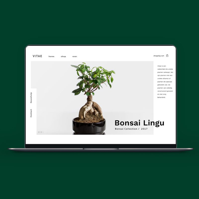 Vitea webshop